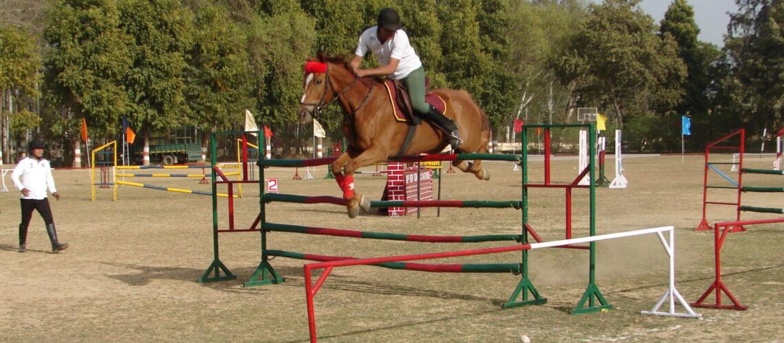 horse-show