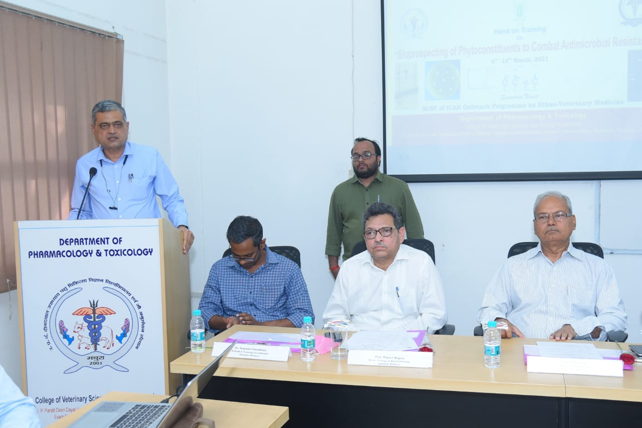 """Glimpses of Valedictory function of Hands on Training programme on """"Bioprospecting of Phytoconstituents to Combat Antimicrobial Resistance"""" Under ICAR-EVM Project held at Department of Veterinary Pharmacology and Toxicology, C. V. Sc. & A.H., DUVASU, Mathura"""